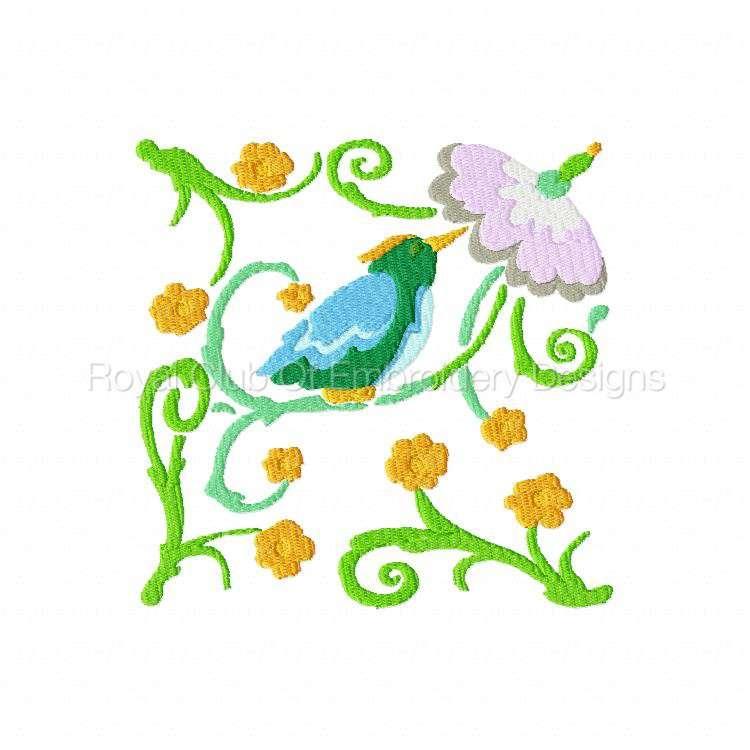2rsjacobeantropicalbirds_03.jpg