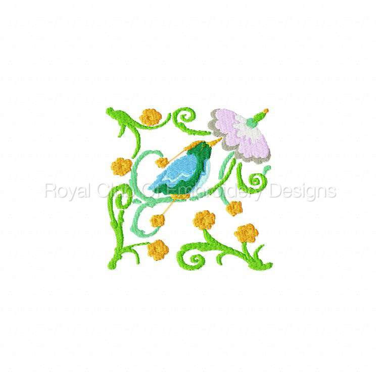 2rsjacobeantropicalbirds_04.jpg