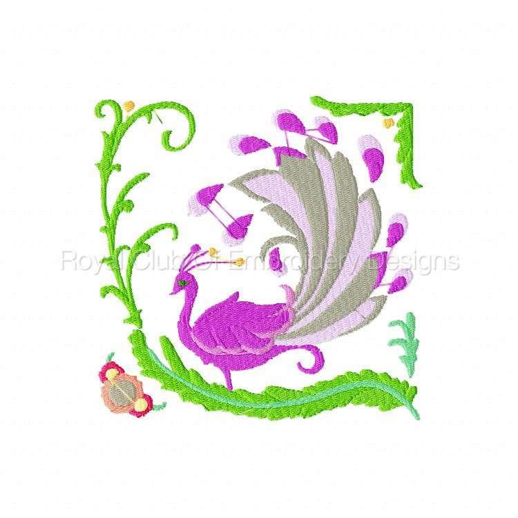 2rsjacobeantropicalbirds_17.jpg