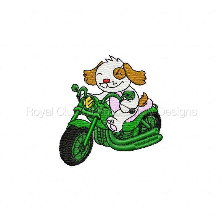animalbikers2_08.jpg