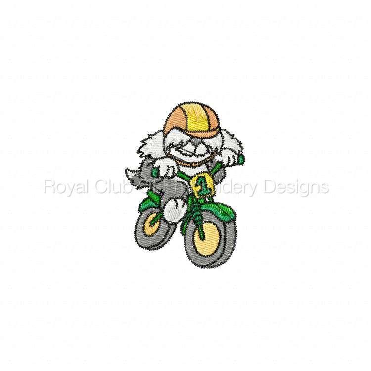 animalbikers_02.jpg