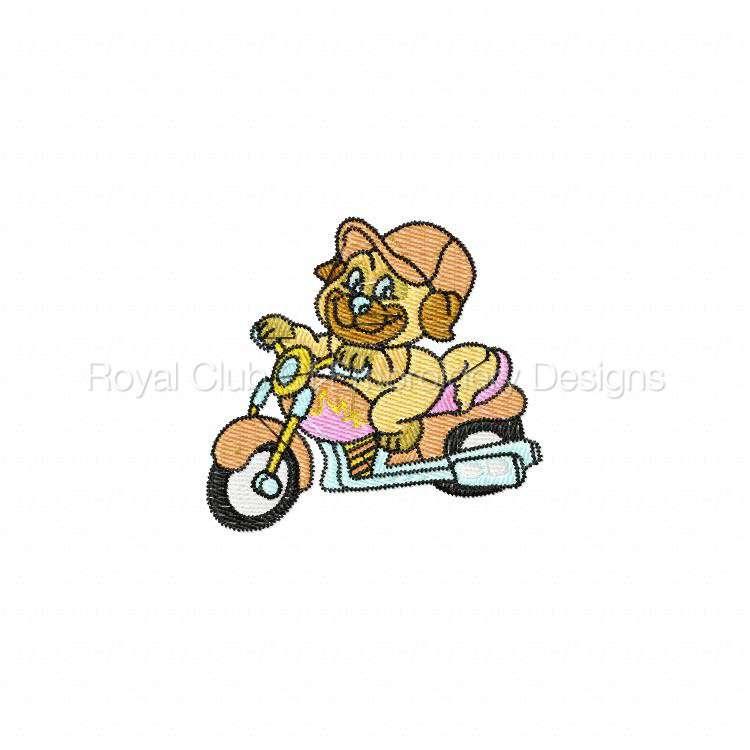 animalbikers_06.jpg
