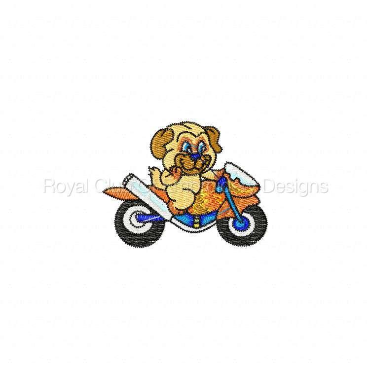 animalbikers_11.jpg