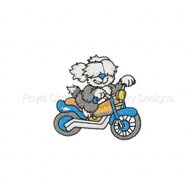 animalbikers_12.jpg