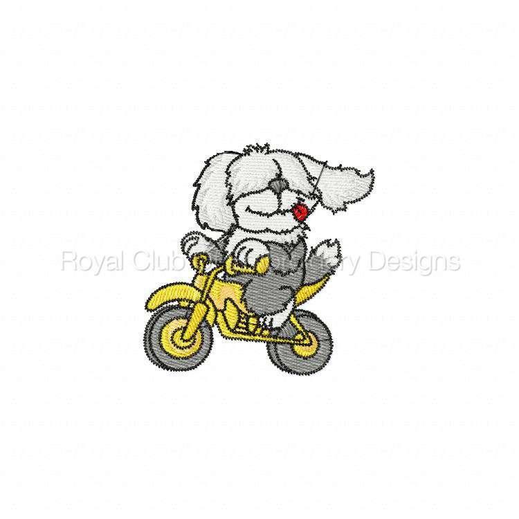 animalbikers_14.jpg