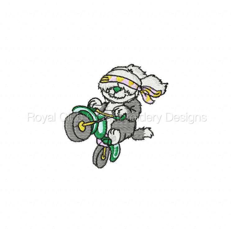 animalbikers_15.jpg