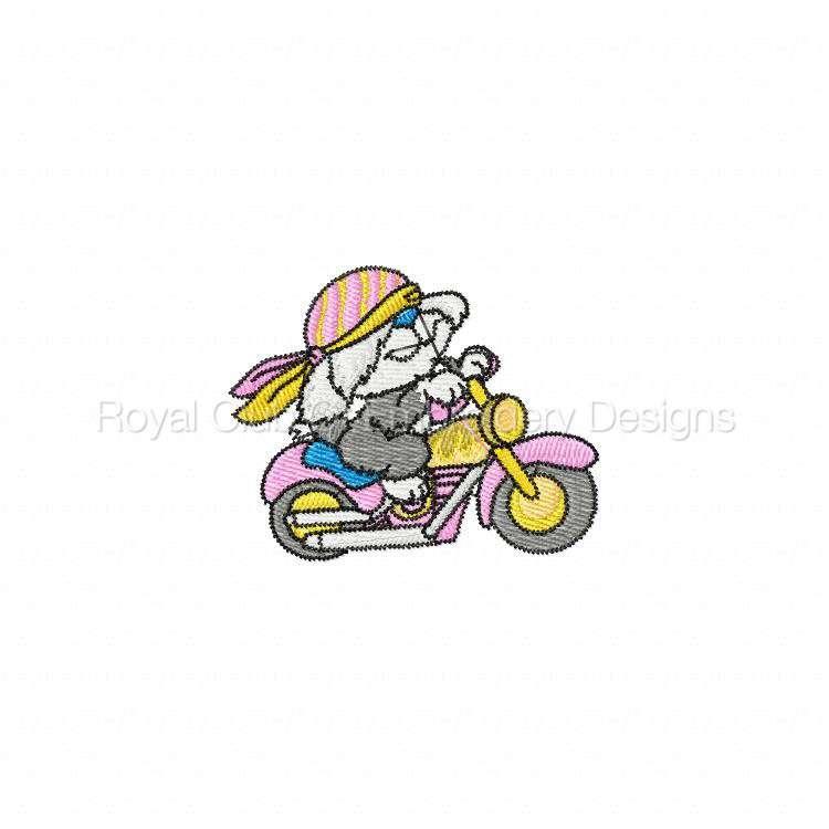 animalbikers_16.jpg