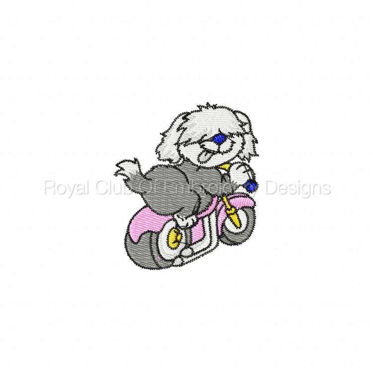 animalbikers_18.jpg