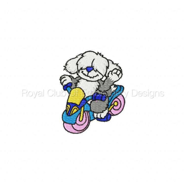 animalbikers_19.jpg