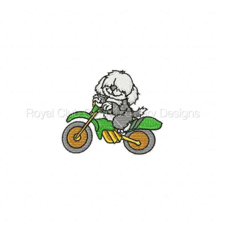animalbikers_20.jpg