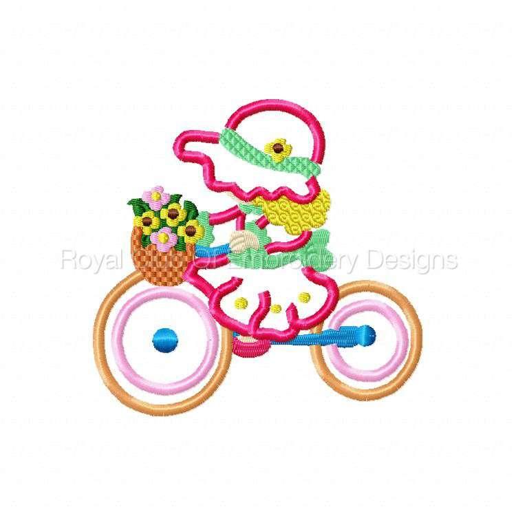 appbonnetsonbikes_02.jpg