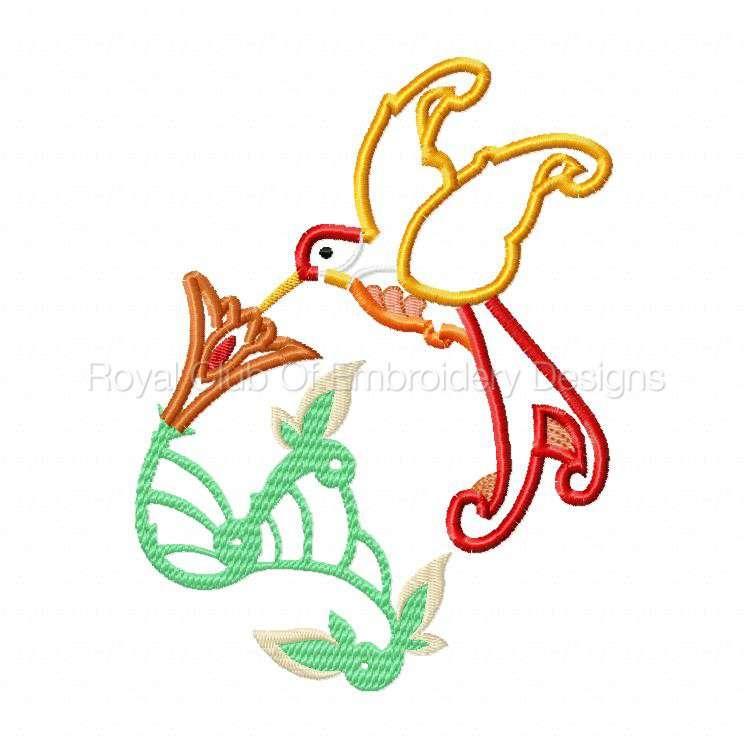 apphummingbirds_06.jpg