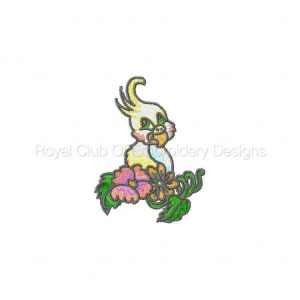 Royal Club Of Embroidery Designs - Machine Embroidery Patterns DD Baby Parrots Set