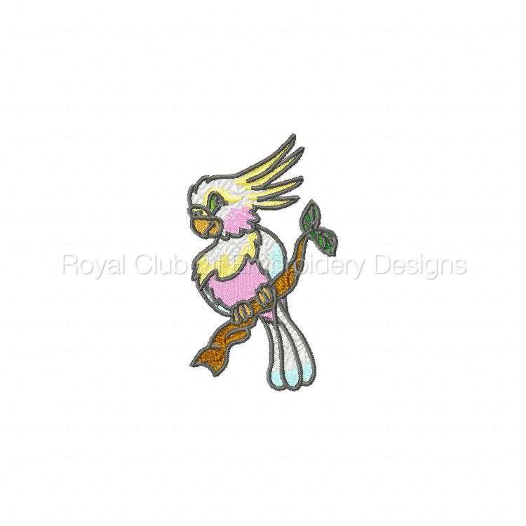 babyparrots_03.jpg