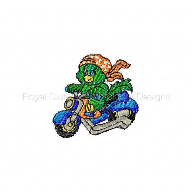 bikerparrots_02.jpg