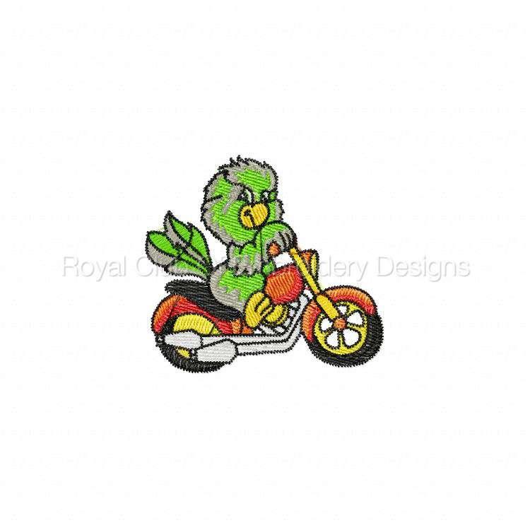 bikerparrots_03.jpg