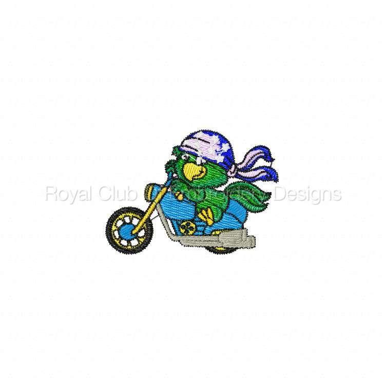 bikerparrots_07.jpg