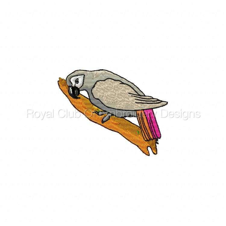 birdloversdelight_1.jpg