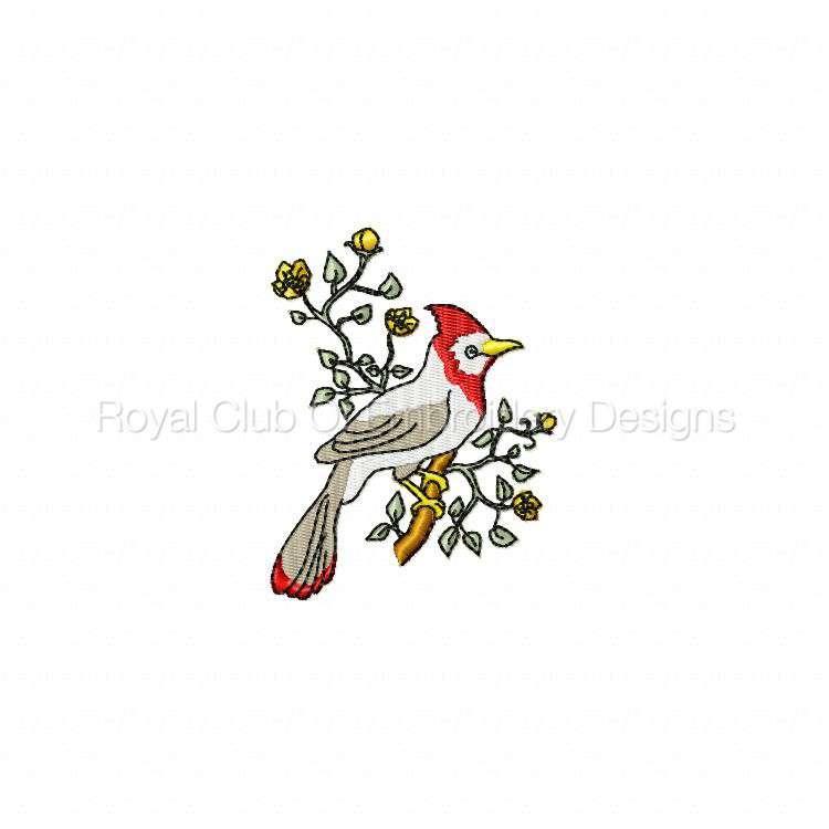 birdsandflowers_01.jpg
