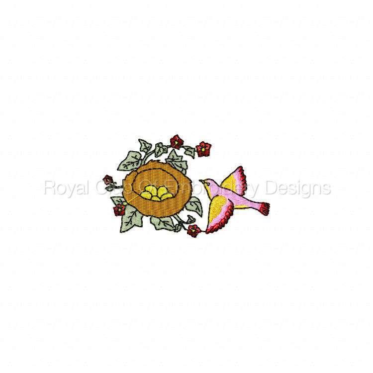 birdsandflowers_08.jpg