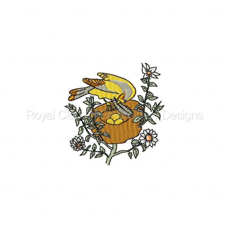 birdsandflowers_09.jpg