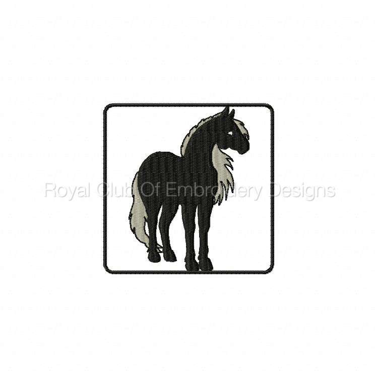 blackhorse_01.jpg