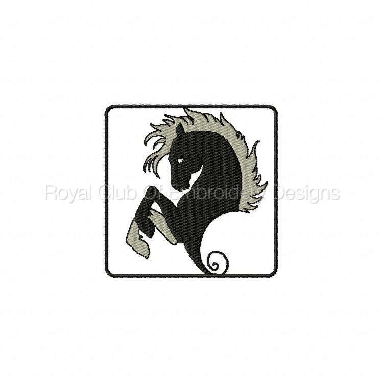 blackhorse_02.jpg