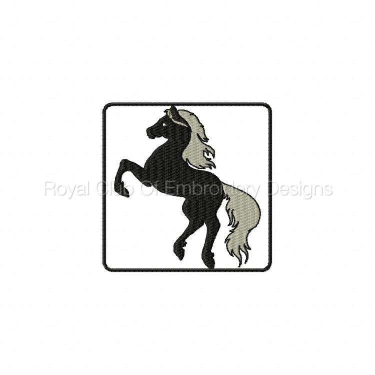 blackhorse_03.jpg