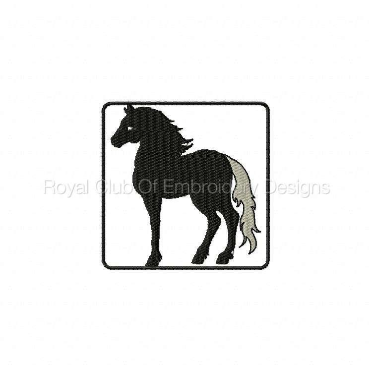 blackhorse_05.jpg