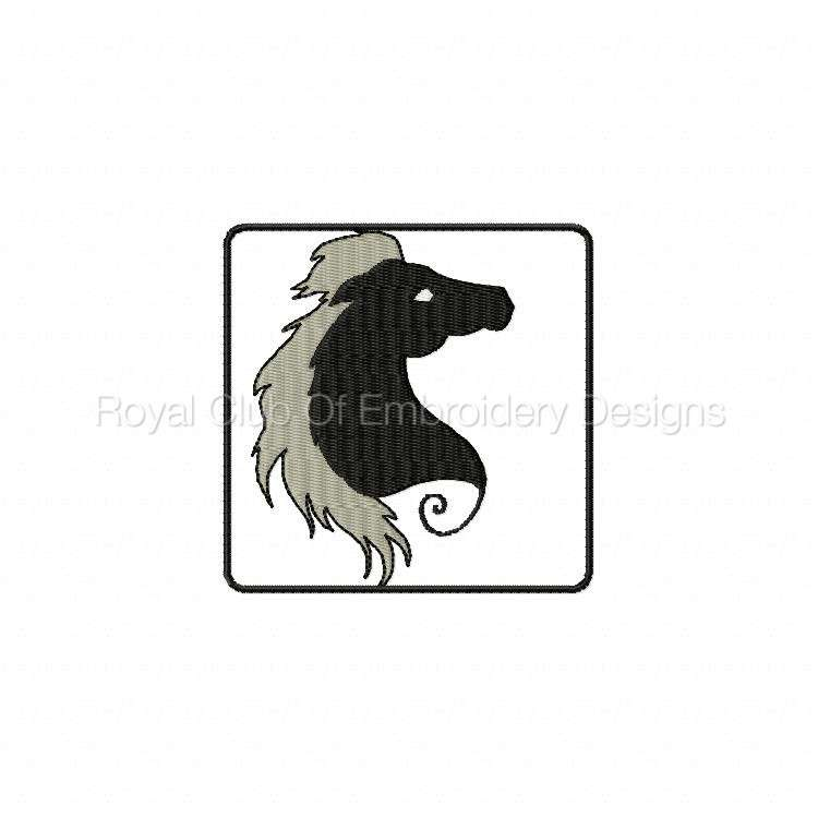 blackhorse_06.jpg