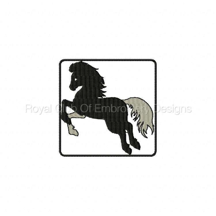 blackhorse_07.jpg