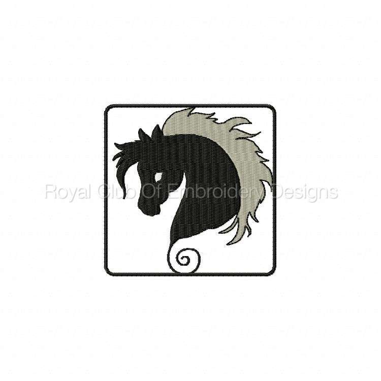 blackhorse_08.jpg