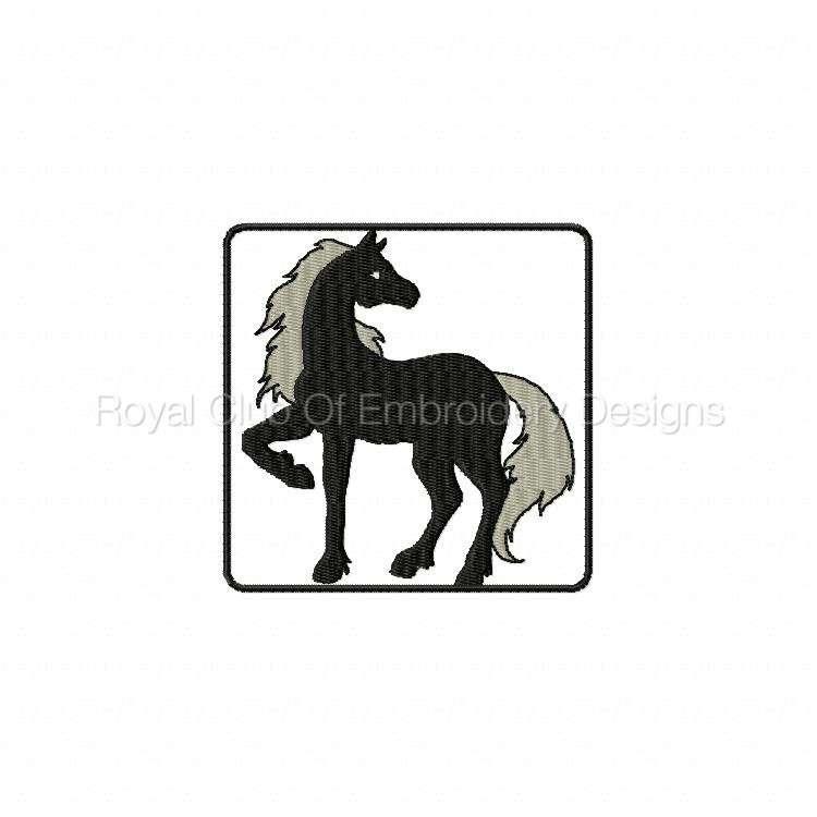blackhorse_09.jpg