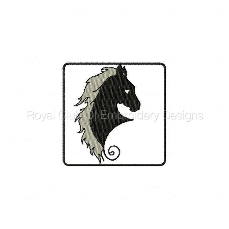 blackhorse_10.jpg