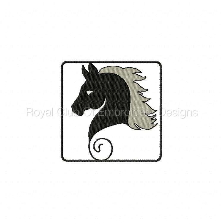 blackhorse_11.jpg