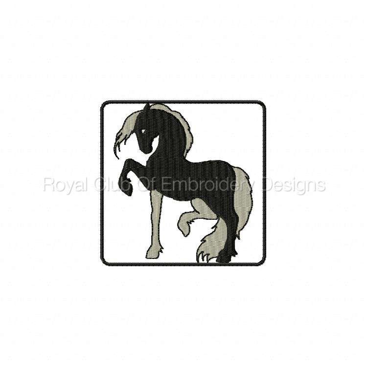 blackhorse_12.jpg