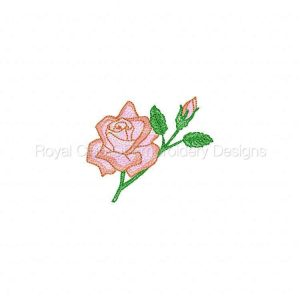 Royal Club Of Embroidery Designs - Machine Embroidery Patterns Blossoms Bugs n Bows Set