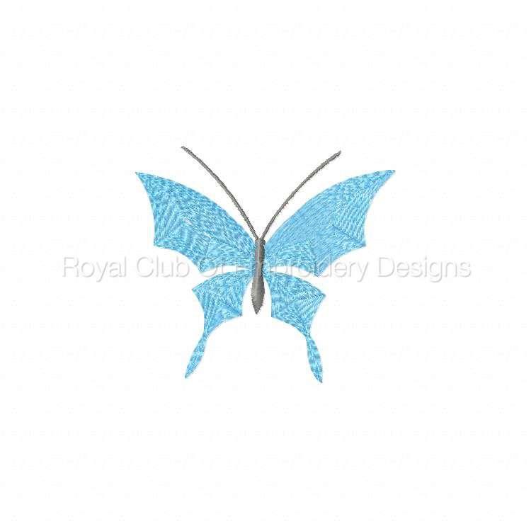 borderlessbutterflies_01.jpg