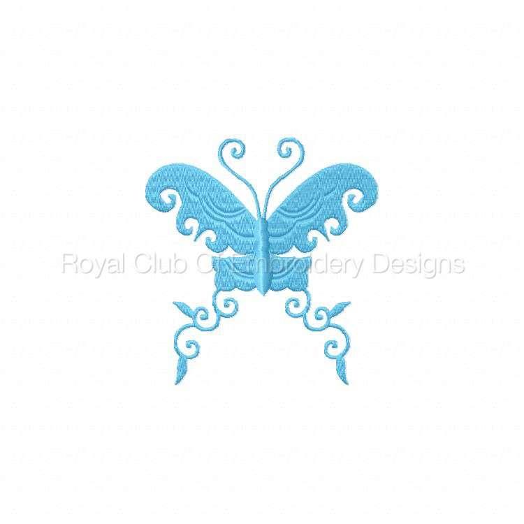 borderlessbutterflies_02.jpg
