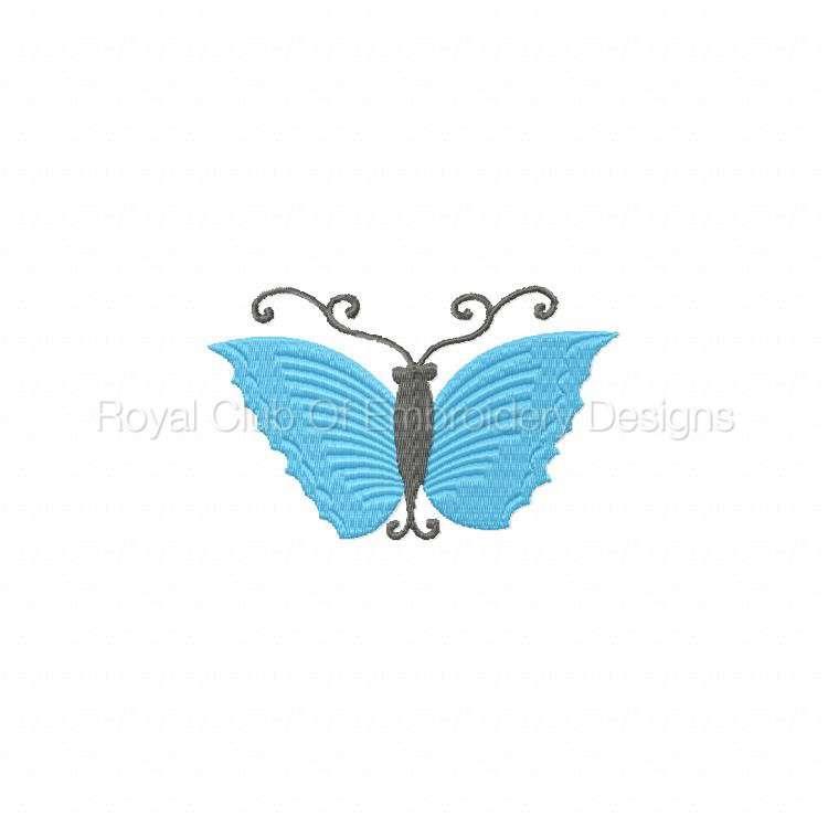 borderlessbutterflies_03.jpg