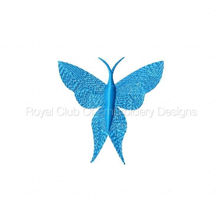 borderlessbutterflies_04.jpg