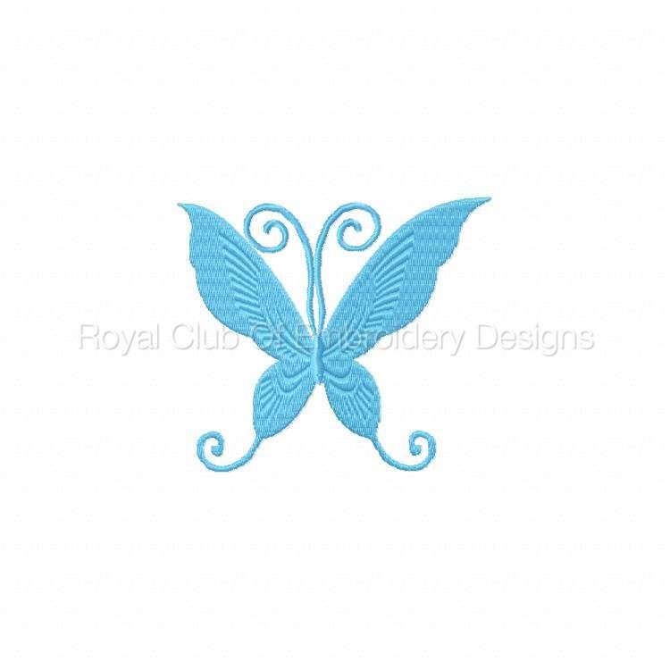 borderlessbutterflies_06.jpg