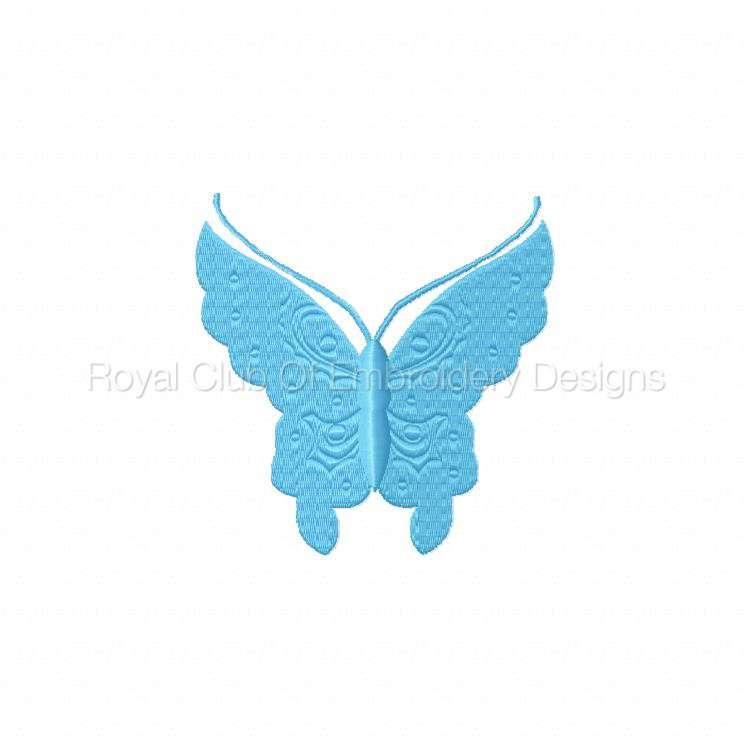 borderlessbutterflies_07.jpg