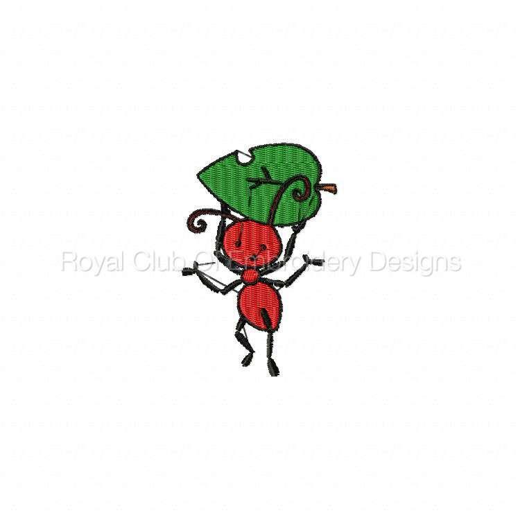bugs_14.jpg