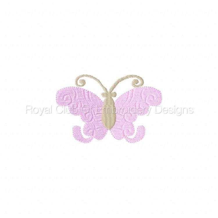 butterflies2_04.jpg
