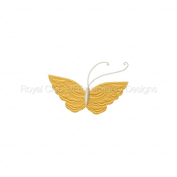 butterflies2_09.jpg