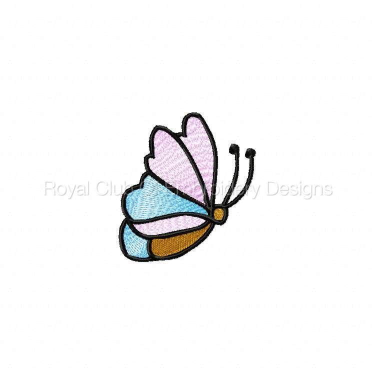 butterfliesgalore_05.jpg