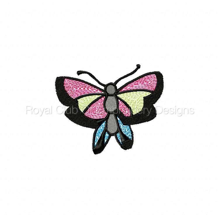 butterfliesgalore_08.jpg