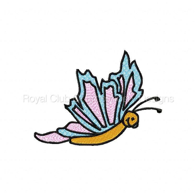 butterfliesgalore_09.jpg