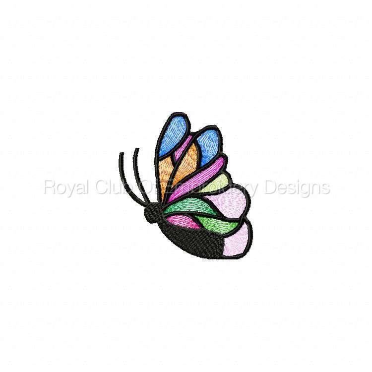 butterfliesgalore_10.jpg